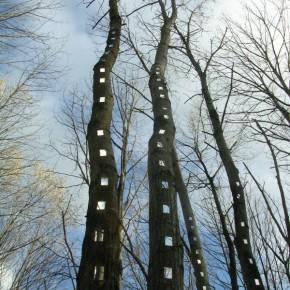 Sentier Art et Nature de Jaujac サンティエ・アール・エ・ナチュール・ド・ジョージャック