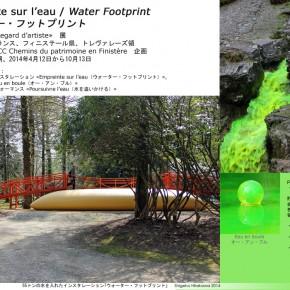 アート・プロジェクト「ウォーター・フットプリント」、ビデオとコンセプト