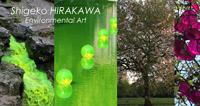 オフィシャル・サイト shigeko-hirakawa.com
